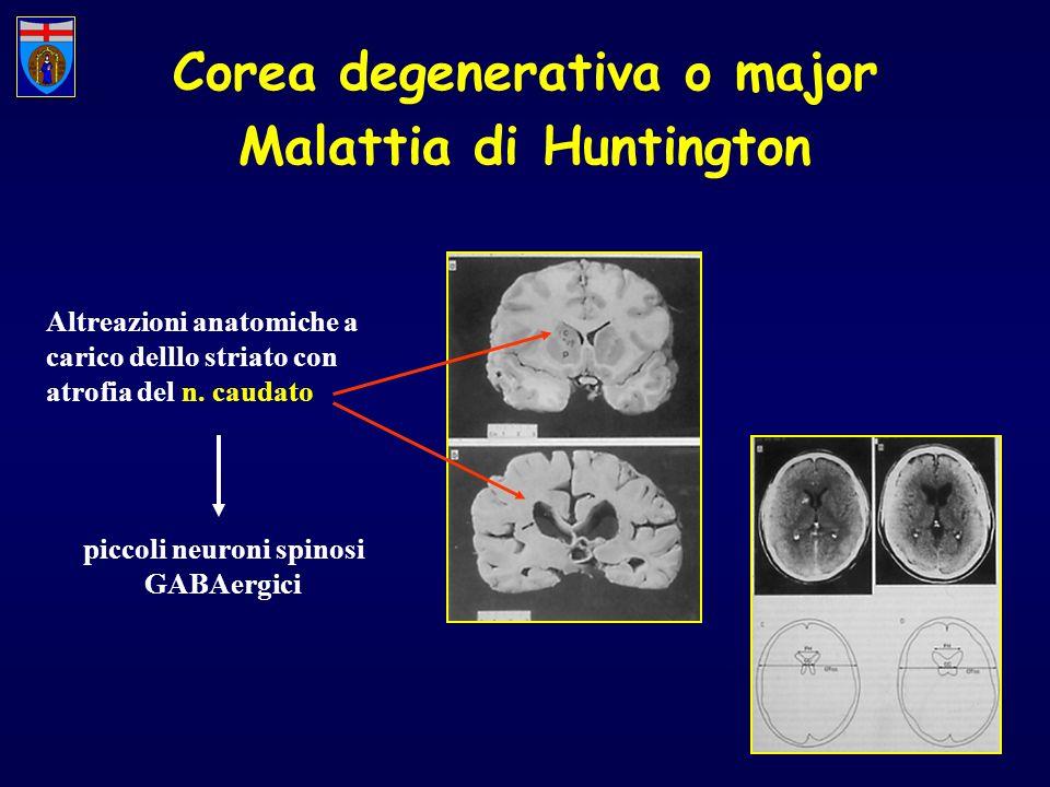 Corea degenerativa o major Malattia di Huntington Altreazioni anatomiche a carico delllo striato con atrofia del n. caudato piccoli neuroni spinosi GA