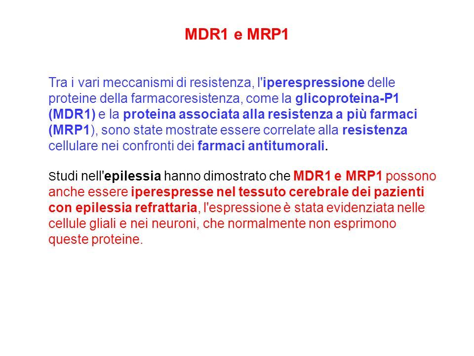 MDR1 e MRP1 Tra i vari meccanismi di resistenza, l'iperespressione delle proteine della farmacoresistenza, come la glicoproteina-P1 (MDR1) e la protei