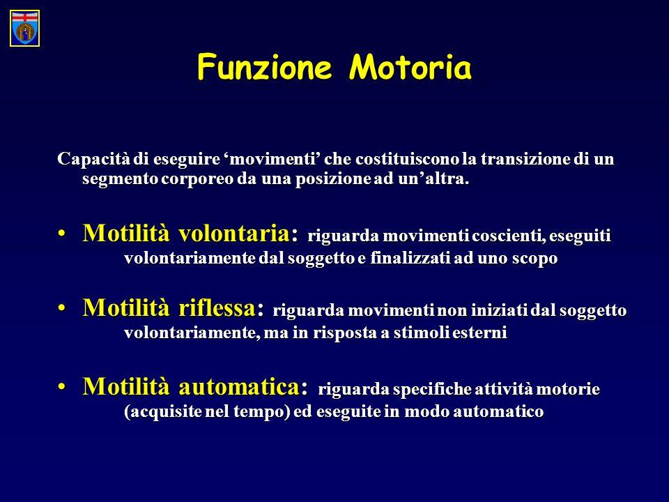 Funzione Motoria Capacità di eseguire movimenti che costituiscono la transizione di un segmento corporeo da una posizione ad unaltra. Motilità volonta