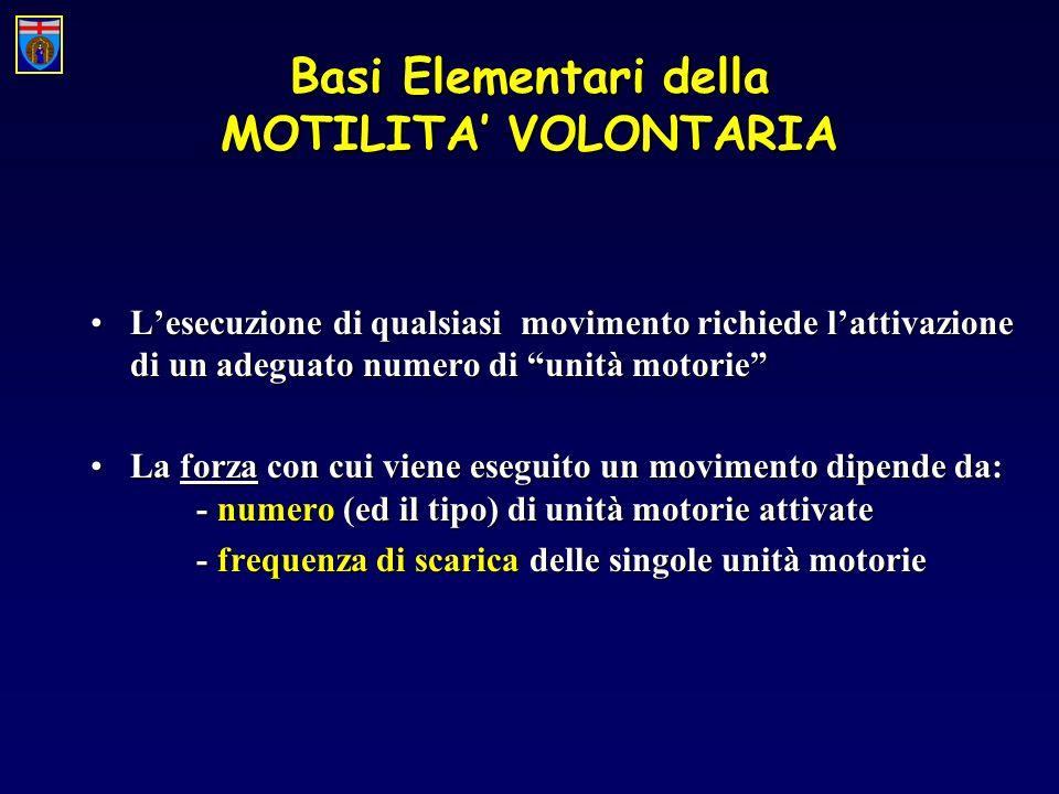 Basi Elementari della MOTILITA VOLONTARIA Una riduzione di forza (paralisi) può essere determinata da: 1.Riduzione più o meno marcata dellafflusso dimpulsi dalla corteccia motoria ai motoneuroni spinali PARALISI DI TIPO CENTRALE 2.Lesione di un certo numero di unità motorie che non possono essere attivate, nonostante il normale afflusso dimpulsi provenienti dalla corteccia motoria PARALISI DI TIPO PERIFERICO 3.Compromissione diretta del MUSCOLO
