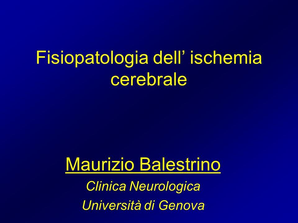 Fisiopatologia dell ischemia cerebrale Maurizio Balestrino Clinica Neurologica Università di Genova