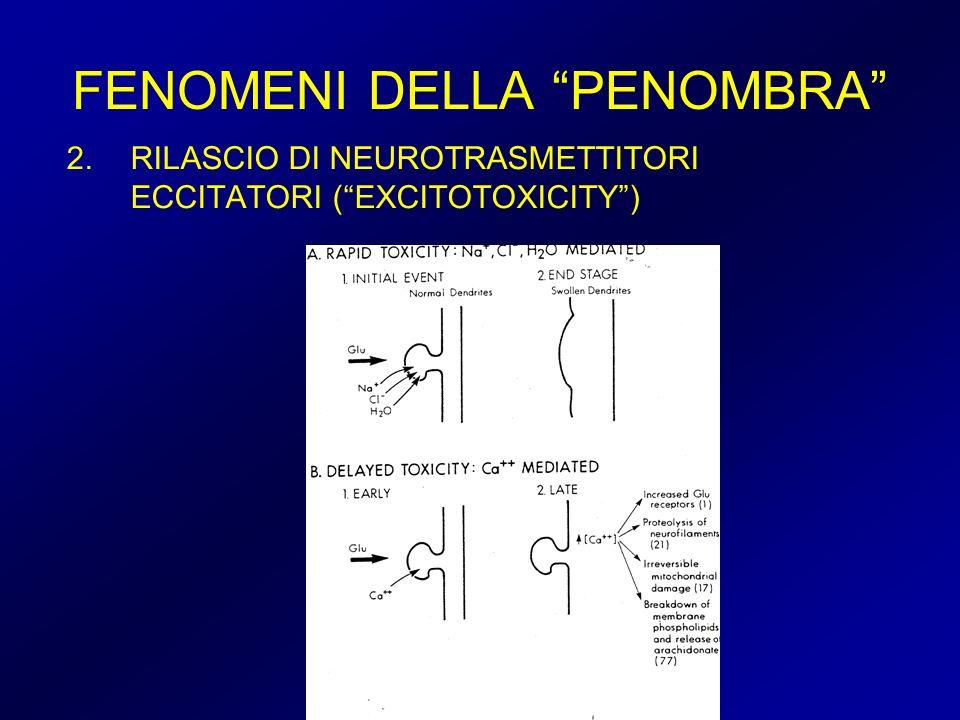 FENOMENI DELLA PENOMBRA 2.RILASCIO DI NEUROTRASMETTITORI ECCITATORI (EXCITOTOXICITY)