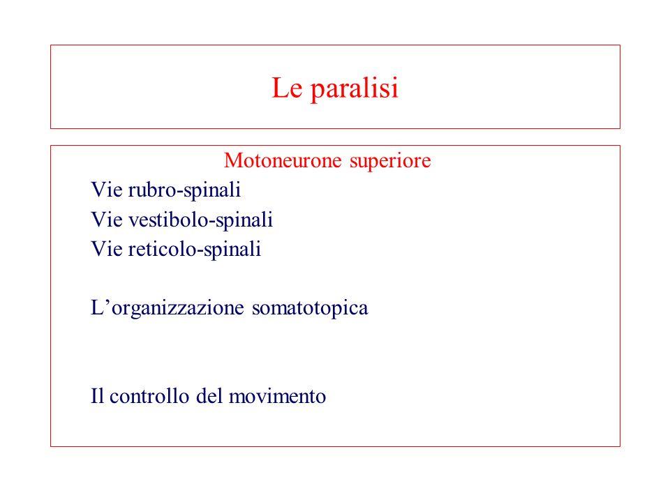Le paralisi Motoneurone superiore Vie rubro-spinali Vie vestibolo-spinali Vie reticolo-spinali Lorganizzazione somatotopica Il controllo del movimento