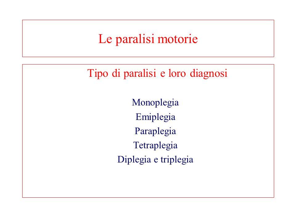 Le paralisi motorie Tipo di paralisi e loro diagnosi Monoplegia Emiplegia Paraplegia Tetraplegia Diplegia e triplegia
