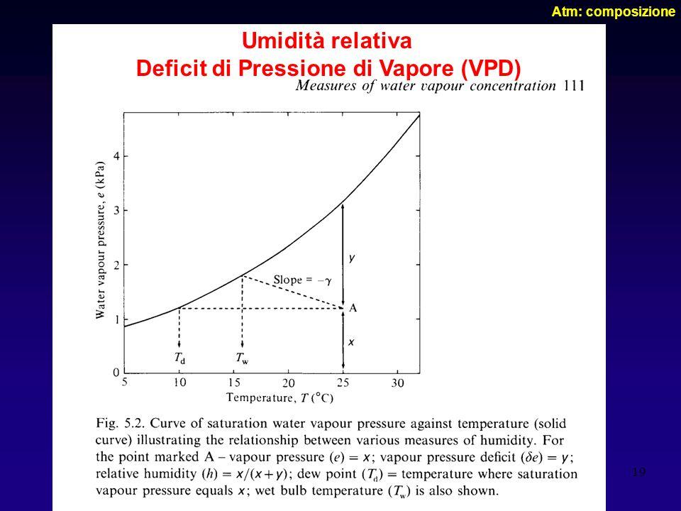 19 Atm: composizione Umidità relativa Deficit di Pressione di Vapore (VPD)