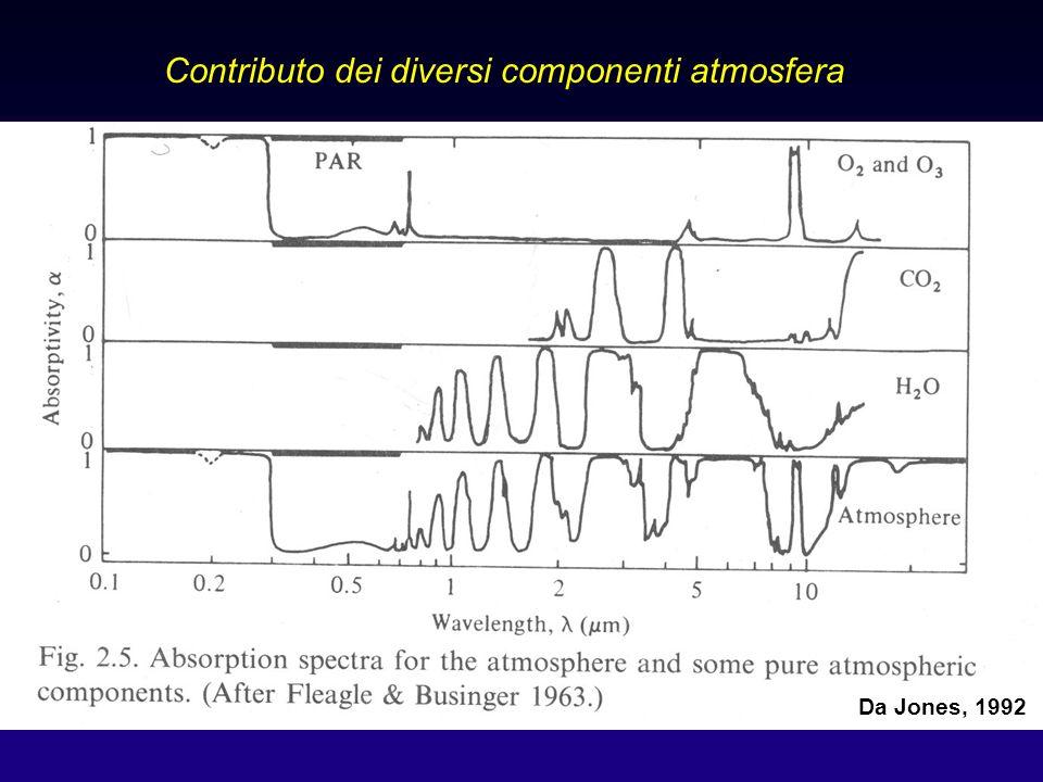 18 Assorbimento radiazione: onde frequenza intermedia da Frova 2001