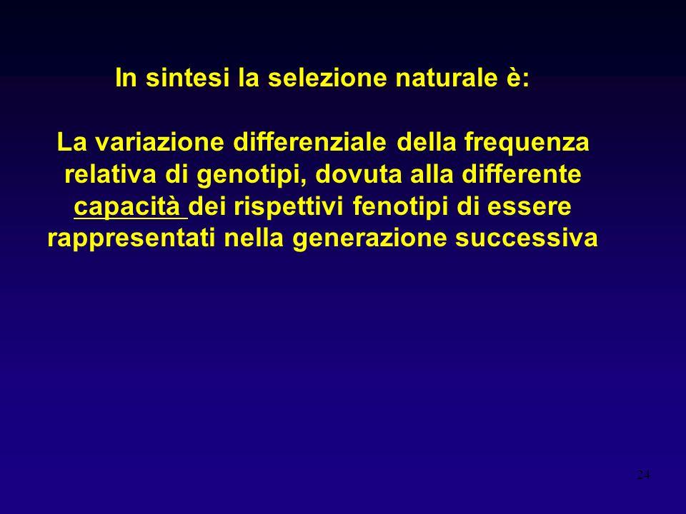 24 In sintesi la selezione naturale è: La variazione differenziale della frequenza relativa di genotipi, dovuta alla differente capacità dei rispettiv