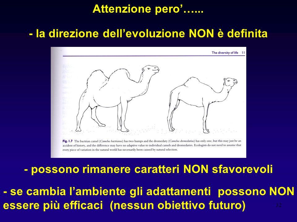 32 Attenzione pero…... - la direzione dellevoluzione NON è definita - possono rimanere caratteri NON sfavorevoli - se cambia lambiente gli adattamenti