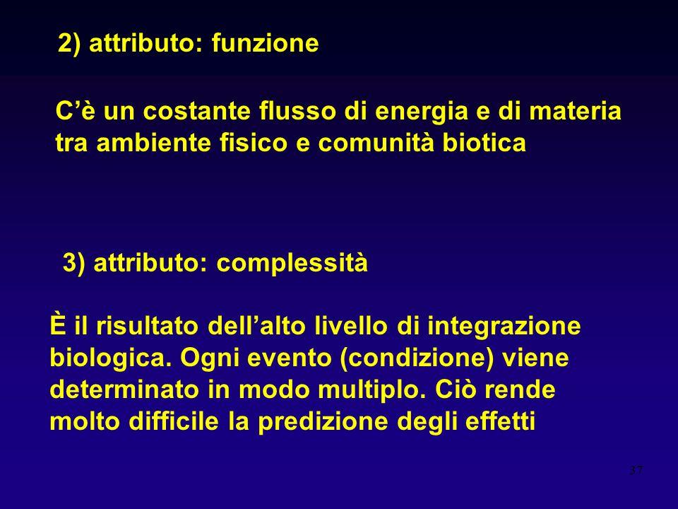 37 2) attributo: funzione Cè un costante flusso di energia e di materia tra ambiente fisico e comunità biotica 3) attributo: complessità È il risultat