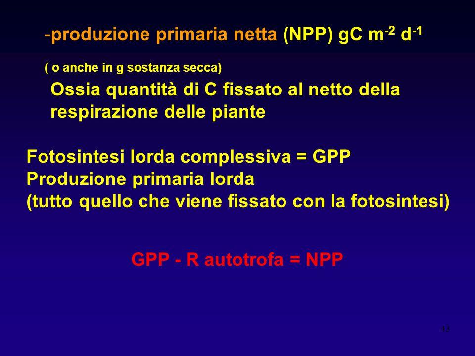 43 -produzione primaria netta (NPP) gC m -2 d -1 ( o anche in g sostanza secca) Ossia quantità di C fissato al netto della respirazione delle piante F