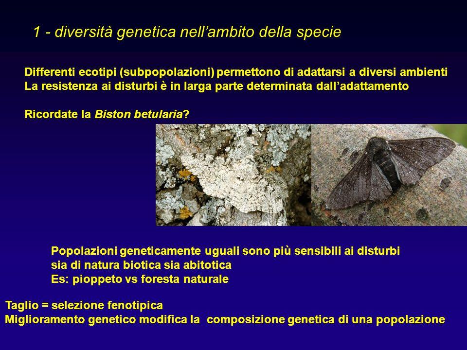 4 2 - diversità tassonomica Numero di generi, famiglie, ordini ecc 3 - diversità di specie (species richness) È il più comune aspetto della biodiversità: numero di specie in un determinato ambiente.