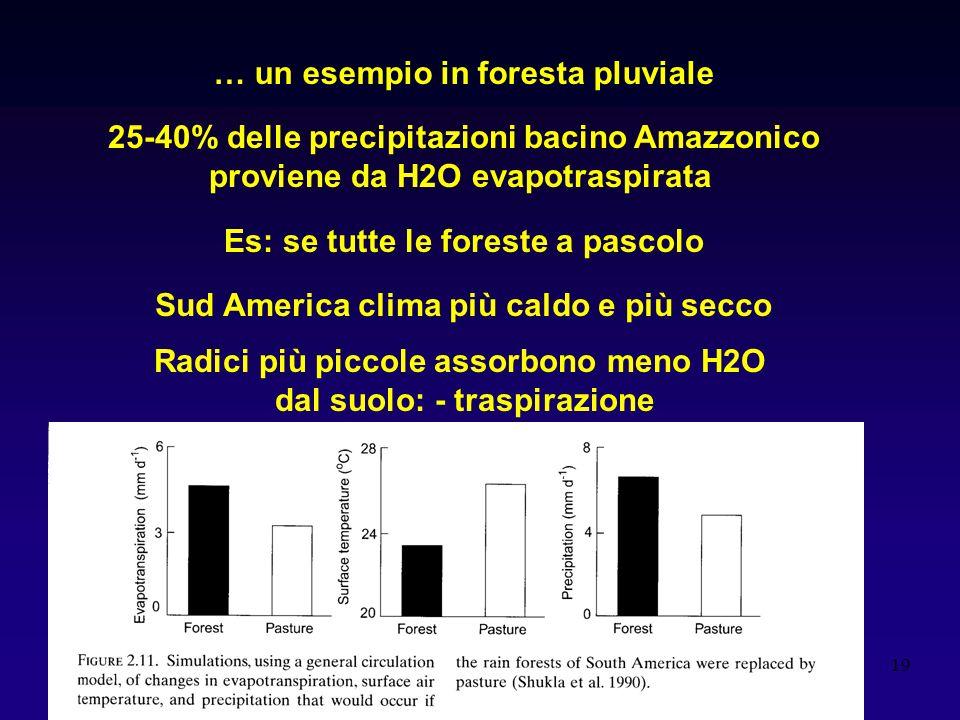19 … un esempio in foresta pluviale 25-40% delle precipitazioni bacino Amazzonico proviene da H2O evapotraspirata Es: se tutte le foreste a pascolo Sud America clima più caldo e più secco Radici più piccole assorbono meno H2O dal suolo: - traspirazione
