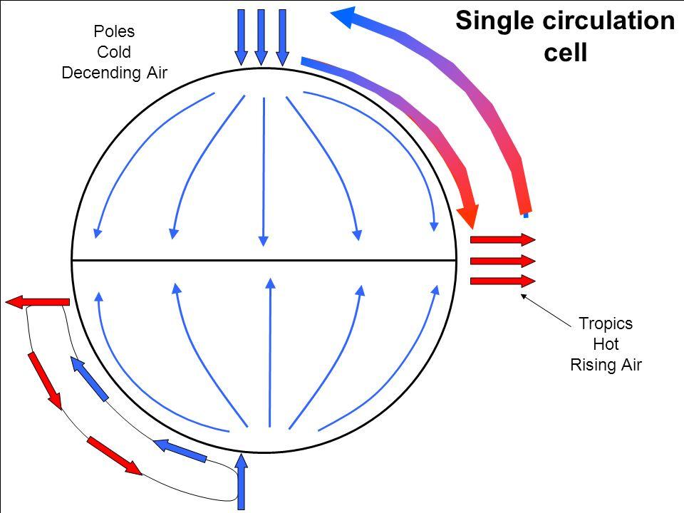 Tropics Hot Rising Air Poles Cold Decending Air Single circulation cell