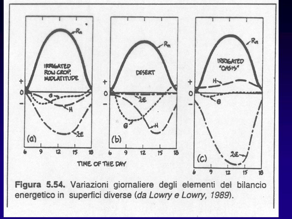13 Fig. 5,54 lucidi