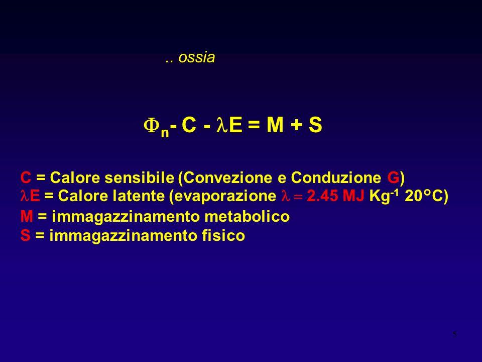 5 n - C - E = M + S C = Calore sensibile (Convezione e Conduzione G) E = Calore latente (evaporazione 2.45 MJ Kg -1 20°C) M = immagazzinamento metabol