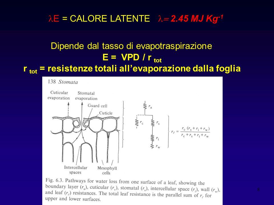 9 M = immagazzinamento metabolico S = immagazzinamento fisico M = fotosintesi e respirazione In genere < 5% n S = energia utilizzata per scaldare la pianta (aumento T) In genere basso ad eccezione di piante con foglie o fusti grandi Es.