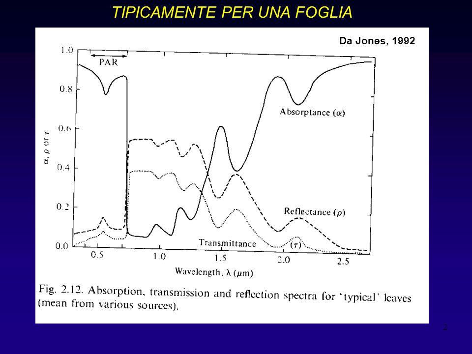 2 TIPICAMENTE PER UNA FOGLIA Grafico 2,12 Jones Da Jones, 1992