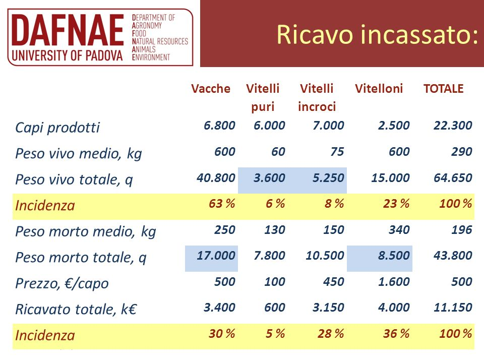 Ricavo incassato: Trento 20/02/2013 Allevatori insieme Vacche Vitelli puri Vitelli incroci VitelloniTOTALE Capi prodotti 6.8006.0007.0002.50022.300 Pe