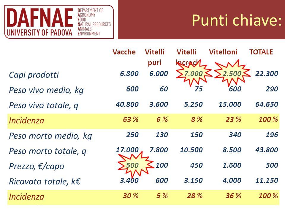 Punti chiave: Trento 20/02/2013 Allevatori insieme Vacche Vitelli puri Vitelli incroci VitelloniTOTALE Capi prodotti 6.8006.0007.0002.50022.300 Peso v