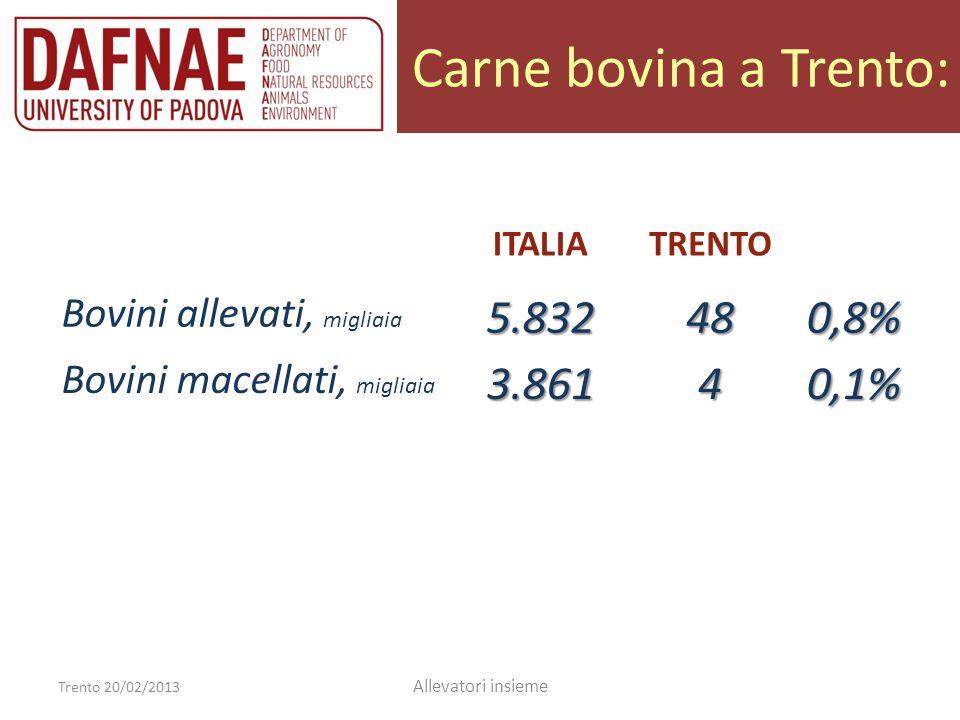 Bovini allevati: Trento 20/02/2013 Allevatori insieme ITALIATRENTO Bovini allevati, migliaia5.83248 Vitelli da macello, % 9 % 2 % Vitelloni, % 10 % 3 % Vitelle e manzette, % 21 % 18 % Manze, % 21 % 22 % Vacche da latte, % 30 % 54 % Vacche da carne, % 9 % 1 %
