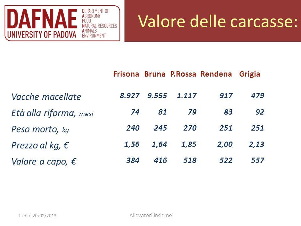 Valore delle carcasse: Trento 20/02/2013 Allevatori insieme FrisonaBrunaP.RossaRendenaGrigia Vacche macellate 8.9279.5551.117917479 Età alla riforma,
