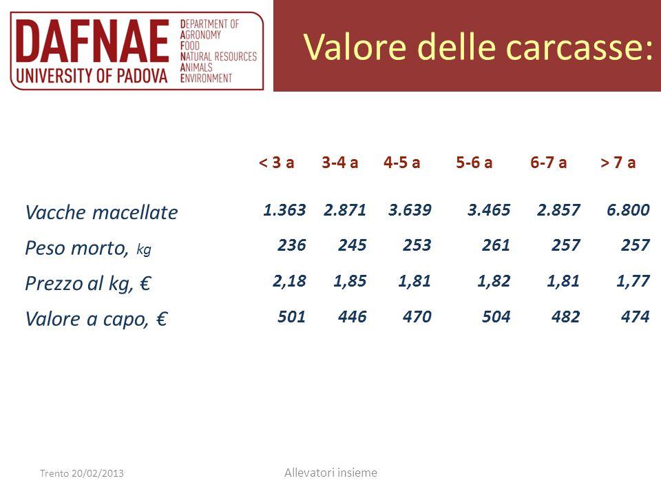 Valore delle carcasse: Trento 20/02/2013 Allevatori insieme < 3 a3-4 a4-5 a5-6 a6-7 a> 7 a Vacche macellate 1.3632.8713.6393.4652.8576.800 Peso morto,