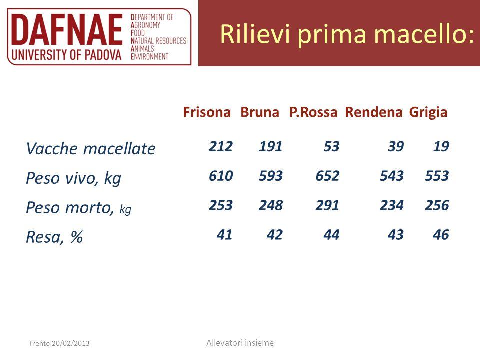 Rilievi prima macello: Trento 20/02/2013 Allevatori insieme FrisonaBrunaP.RossaRendenaGrigia Vacche macellate 212191533919 Peso vivo, kg 6105936525435