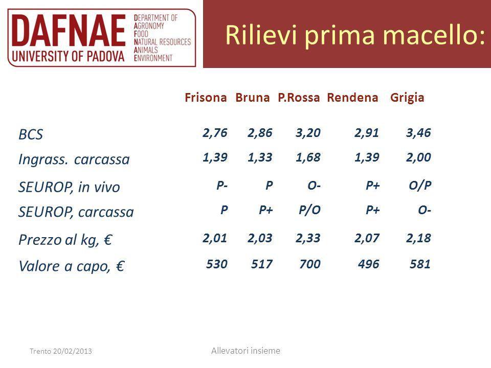 Rilievi prima macello: Trento 20/02/2013 Allevatori insieme FrisonaBrunaP.RossaRendenaGrigia BCS 2,762,863,202,913,46 Ingrass. carcassa 1,391,331,681,