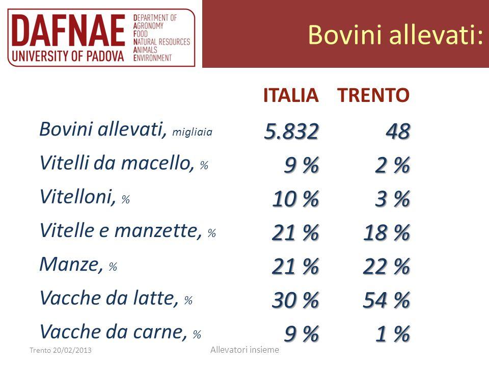 Bovini allevati: Trento 20/02/2013 Allevatori insieme ITALIATRENTO Bovini allevati, migliaia5.83248 Vitelli da macello, % 9 % 2 % Vitelloni, % 10 % 3