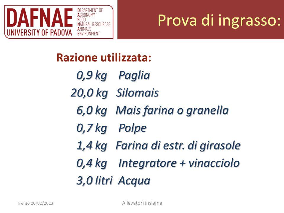 Prova di ingrasso: Trento 20/02/2013 Allevatori insieme Razione utilizzata: 0,9 kg Paglia 0,9 kg Paglia 20,0 kg Silomais 20,0 kg Silomais 6,0 kg Mais