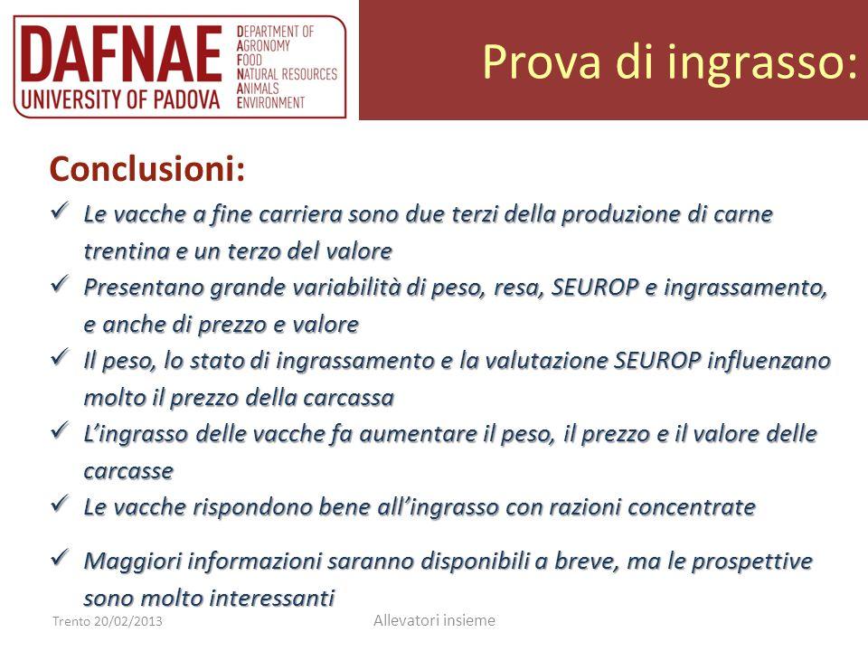 Prova di ingrasso: Trento 20/02/2013 Allevatori insieme Conclusioni: Le vacche a fine carriera sono due terzi della produzione di carne trentina e un