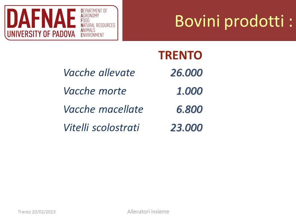 Bovini prodotti : Trento 20/02/2013 Allevatori insieme TRENTO Vacche allevate26.000 Vacche morte1.000 Vacche macellate6.800 Vitelli/e scolostrati23.000 Vitelli11.500 Vitelle da rimonta7.500 Vitelle eccedenti4.000