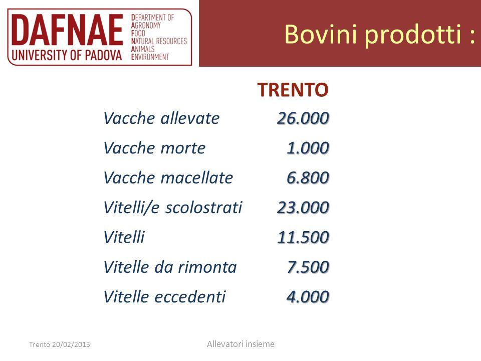 Bovini prodotti : Trento 20/02/2013 Allevatori insieme TRENTO Vacche allevate26.000 Vacche morte1.000 Vacche macellate6.800 Vitelli scolostrati23.000 Vitelle da rimonta7.500 Vitelle eccedenti4.000 Vitelli11.500 Vitelloni e manze(2.500)