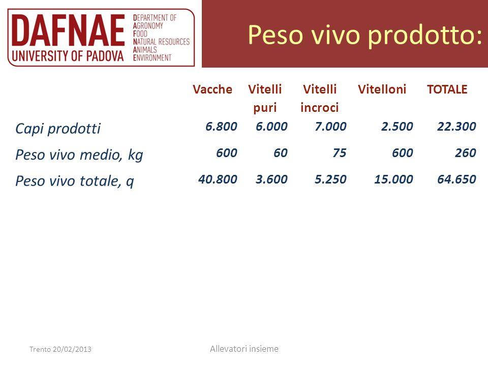Peso vivo prodotto: Trento 20/02/2013 Allevatori insieme Vacche Vitelli puri Vitelli incroci VitelloniTOTALE Capi prodotti 6.8006.0007.0002.50022.300 Peso vivo medio, kg 6006075600290 Peso vivo totale, q 40.8003.6005.25015.00064.650 Incidenza 63 %6 %8 %23 %100 %