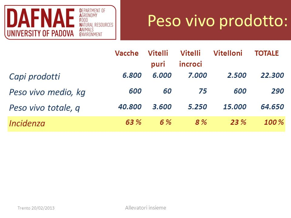 Peso vivo prodotto: Trento 20/02/2013 Allevatori insieme Vacche Vitelli puri Vitelli incroci VitelloniTOTALE Capi prodotti 6.8006.0007.0002.50022.300