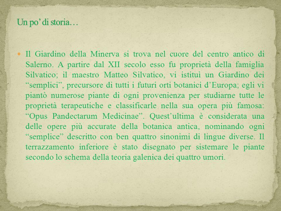 Creato da: Giorgio Caiazzo, Roberta Di Natale, Valeria Formisano, Renato Gizzi e Gianluigi Sacchettino