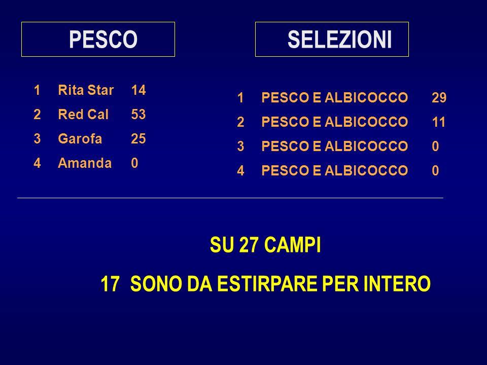 1Rita Star14 2Red Cal53 3Garofa25 4Amanda0 PESCO 1PESCO E ALBICOCCO29 2PESCO E ALBICOCCO11 3PESCO E ALBICOCCO0 4PESCO E ALBICOCCO0 SELEZIONI SU 27 CAMPI 17 SONO DA ESTIRPARE PER INTERO