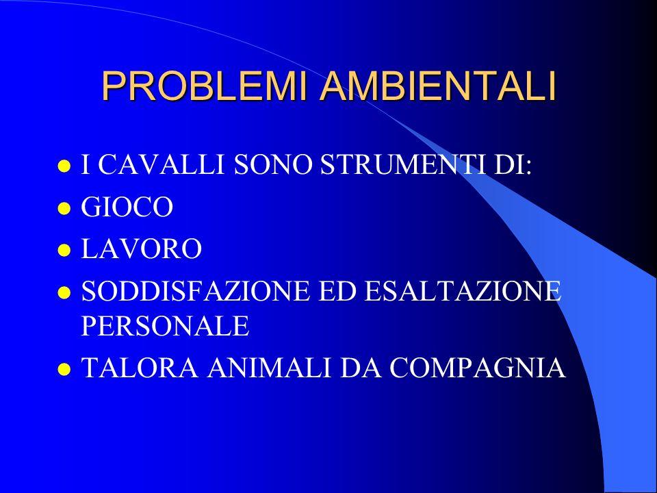 PROBLEMI AMBIENTALI l continua sfida in termini di relazioni sociali: l proprietario l istruttore o trainer o fantino o driver l maniscalco l veterinario