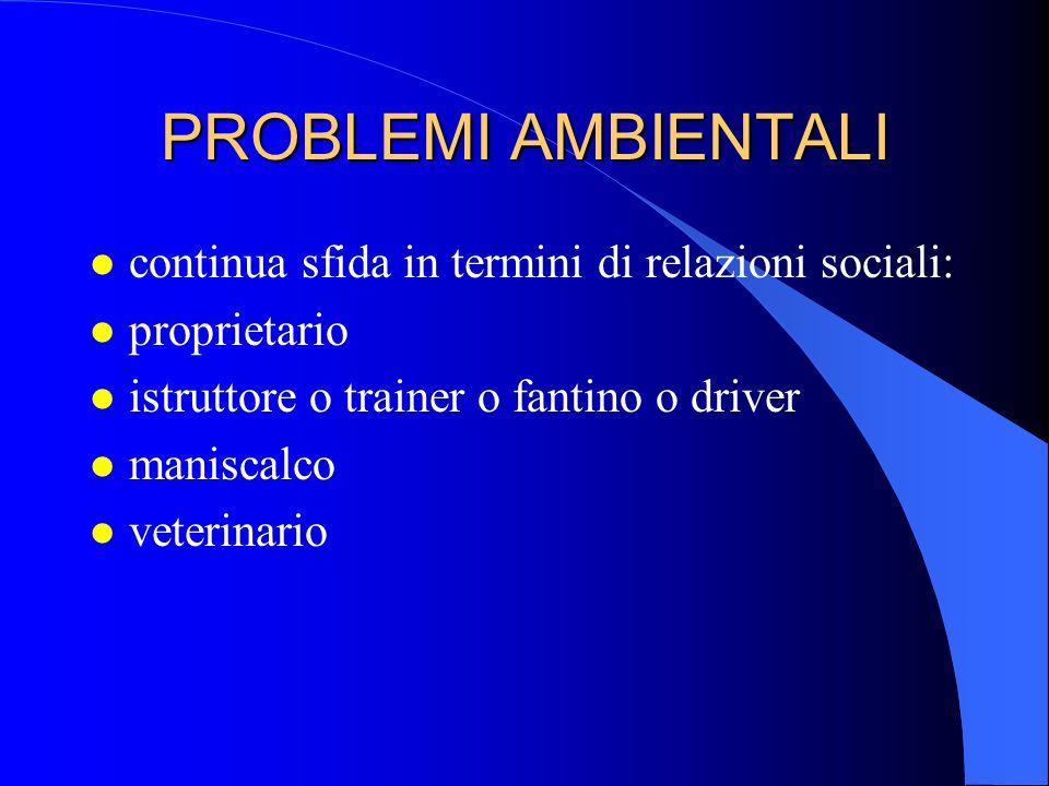 PROBLEMI AMBIENTALI l continua sfida in termini di relazioni sociali: l proprietario l istruttore o trainer o fantino o driver l maniscalco l veterina