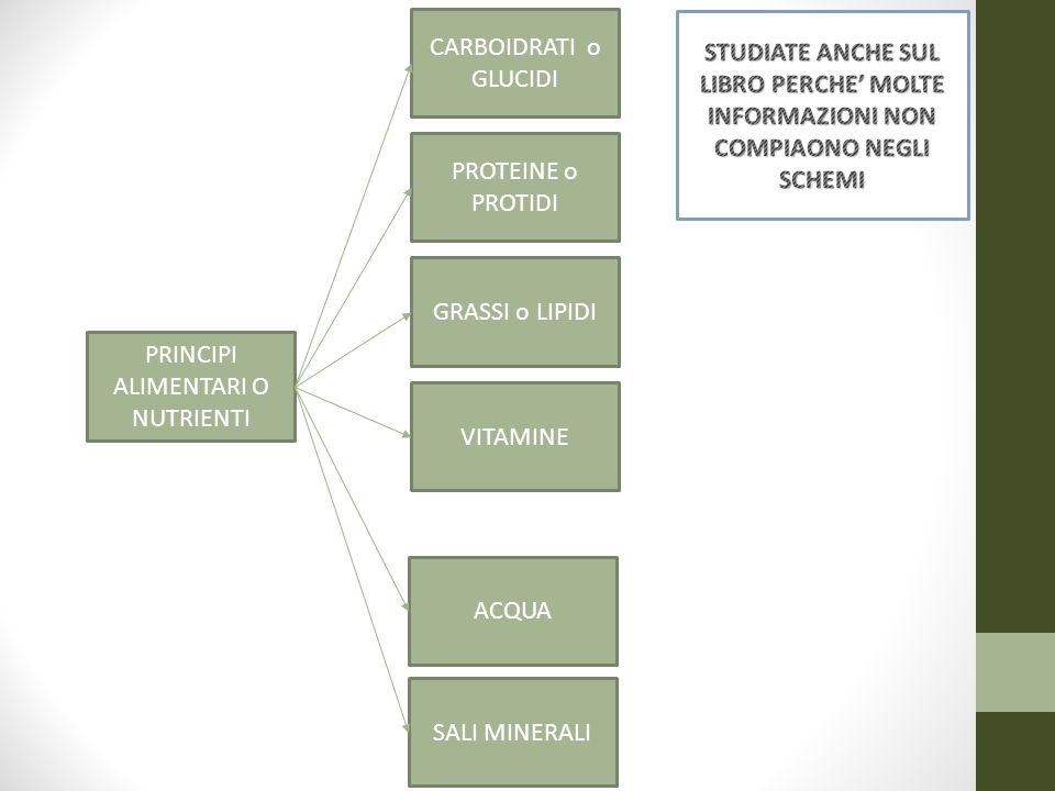 PRINCIPI ALIMENTARI O NUTRIENTI CARBOIDRATI o GLUCIDI PROTEINE o PROTIDI GRASSI o LIPIDI VITAMINE ACQUA SALI MINERALI