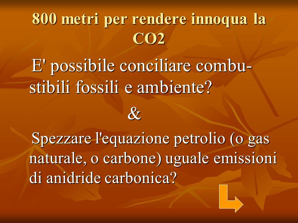 800 metri per rendere innoqua la CO2 E' possibile conciliare combu- stibili fossili e ambiente? E' possibile conciliare combu- stibili fossili e ambie