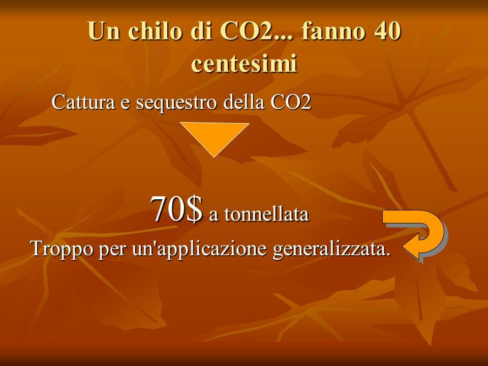 Un chilo di CO2... fanno 40 centesimi Cattura e sequestro della CO2 Cattura e sequestro della CO2 70$ a tonnellata 70$ a tonnellata Troppo per un'appl