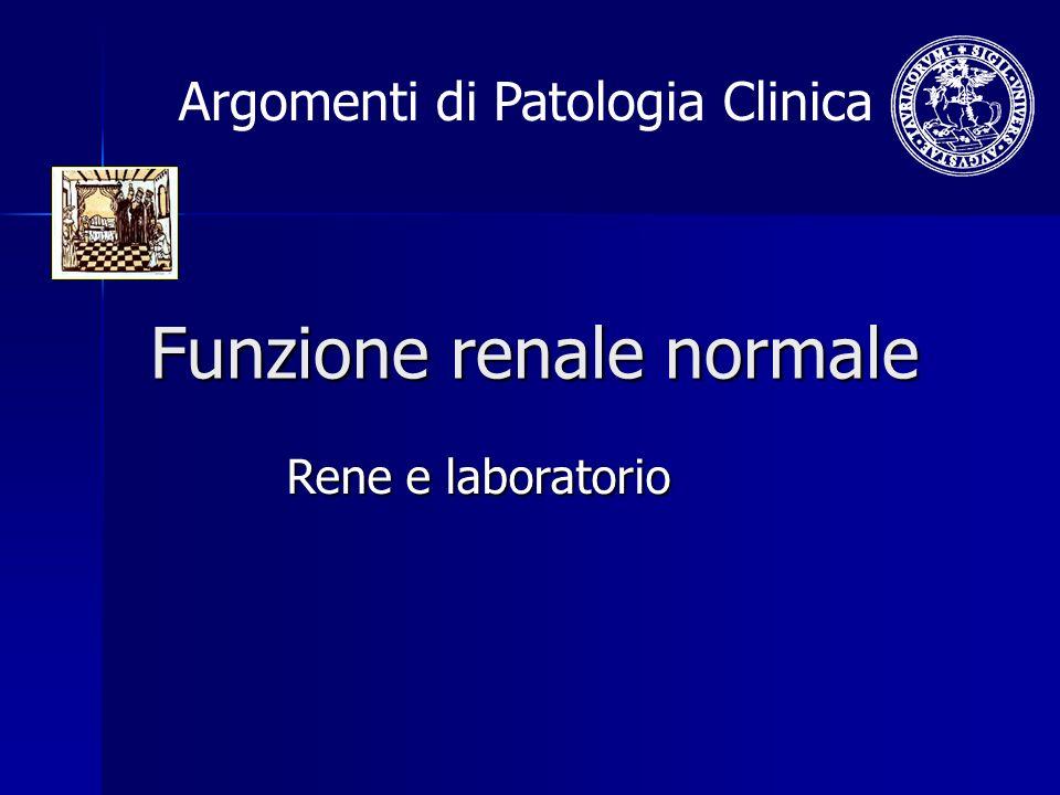 Funzione renale normale Rene e laboratorio Argomenti di Patologia Clinica