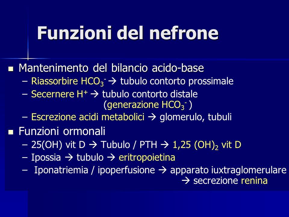 Funzioni del nefrone Mantenimento del bilancio acido-base Mantenimento del bilancio acido-base – –Riassorbire HCO 3 - tubulo contorto prossimale – –Secernere H + tubulo contorto distale (generazione HCO 3 - ) – –Escrezione acidi metabolici glomerulo, tubuli Funzioni ormonali – –25(OH) vit D Tubulo / PTH 1,25 (OH) 2 vit D – –Ipossia tubulo eritropoietina – – Iponatriemia / ipoperfusione apparato iuxtraglomerulare secrezione renina