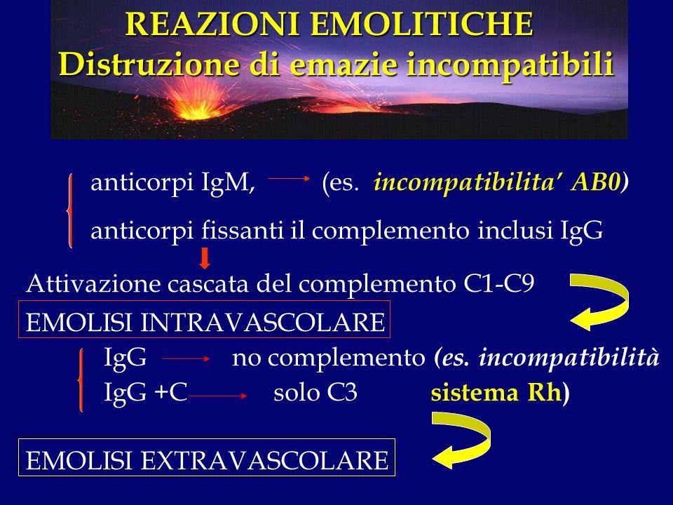 REAZIONI TRASFUSIONALI REAZIONI EMOLITICHE ACUTE I MMUNOMEDIATE infusione di emazie incompatibili(AB0 ) REAZIONI TRASFUSIONALI REAZIONI EMOLITICHE ACUTE I MMUNOMEDIATE infusione di emazie incompatibili(AB0 ) SINTOMI l dolore e bruciore al sito della infusione l dolori lombari, toracici l brividi l febbre l arrossamento l ipotensione e shock l dispnea l emorragie generalizzate l emoglobinuria l oliguria, anuria l insufficienza renale irreversibile l CID