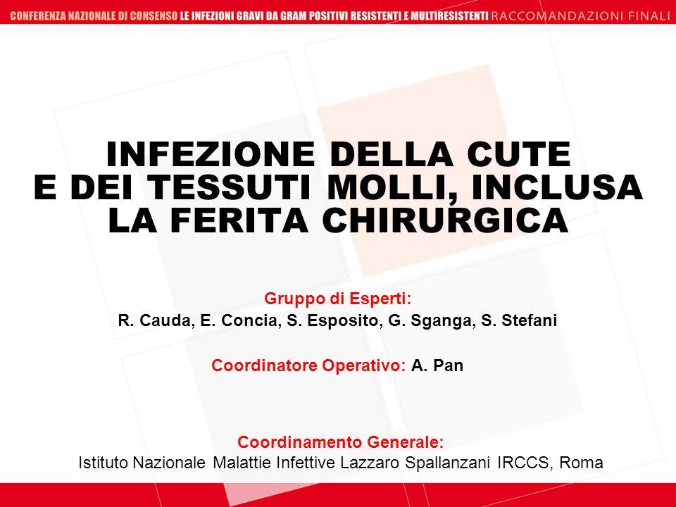 INFEZIONE DELLA CUTE E DEI TESSUTI MOLLI, INCLUSA LA FERITA CHIRURGICA Coordinamento Generale: Istituto Nazionale Malattie Infettive Lazzaro Spallanza