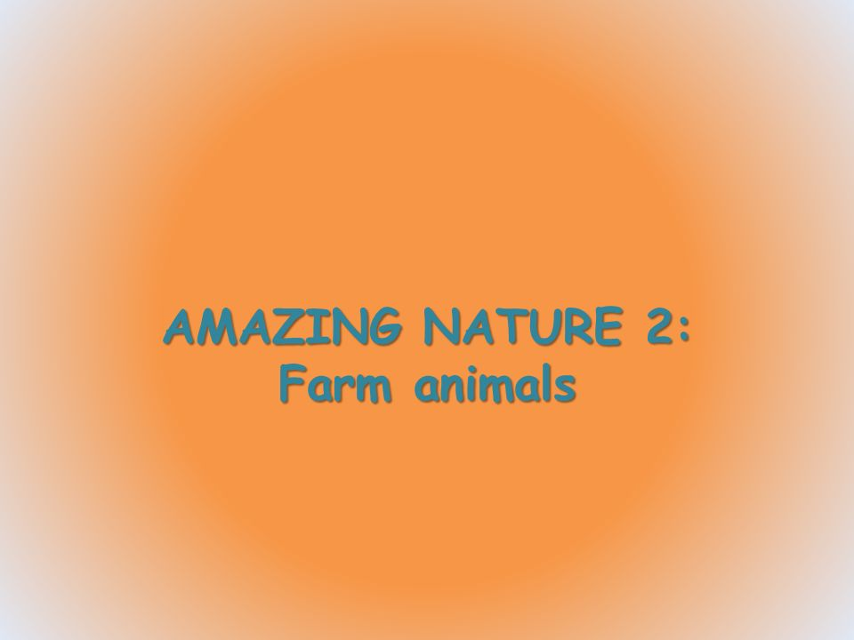 AMAZING NATURE 2: Farm animals