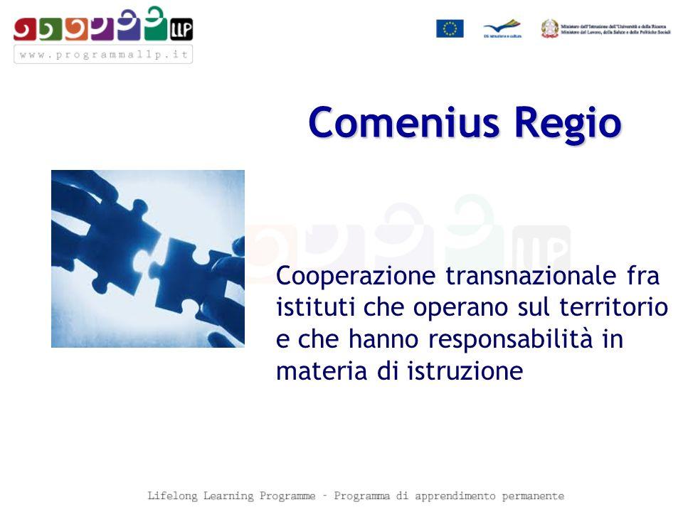 Comenius Regio Cooperazione transnazionale fra istituti che operano sul territorio e che hanno responsabilità in materia di istruzione