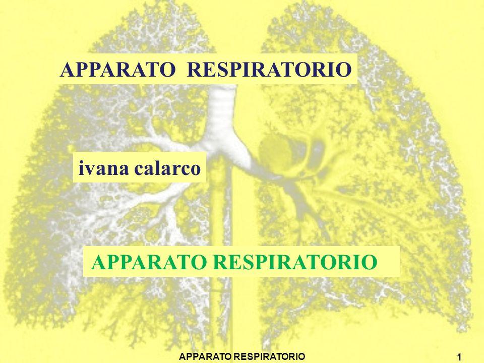 APPARATO RESPIRATORIO 1 ivana calarco APPARATO RESPIRATORIO