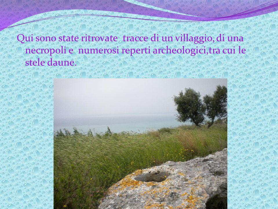 I Dauni, provenienti dallIlliria e giunti sul territorio dellodierna provincia di Foggia nellEtà del Ferro, hanno fondato numerosi villaggi, soprattut